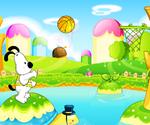 Basket Chien