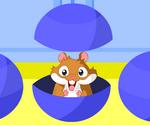 Boule Hamster