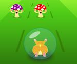 Course De Hamster