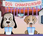 Dog Championship