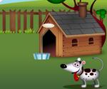 Dog Dream House