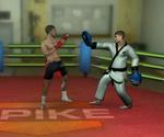 MMA Training Ground