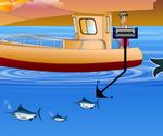 Pêche Espadon