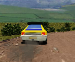 Rally Stage